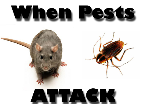 When pests attack, call Buzz Kill Pest Control
