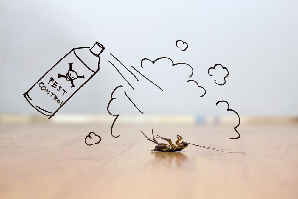 Dead Roach Pest Control